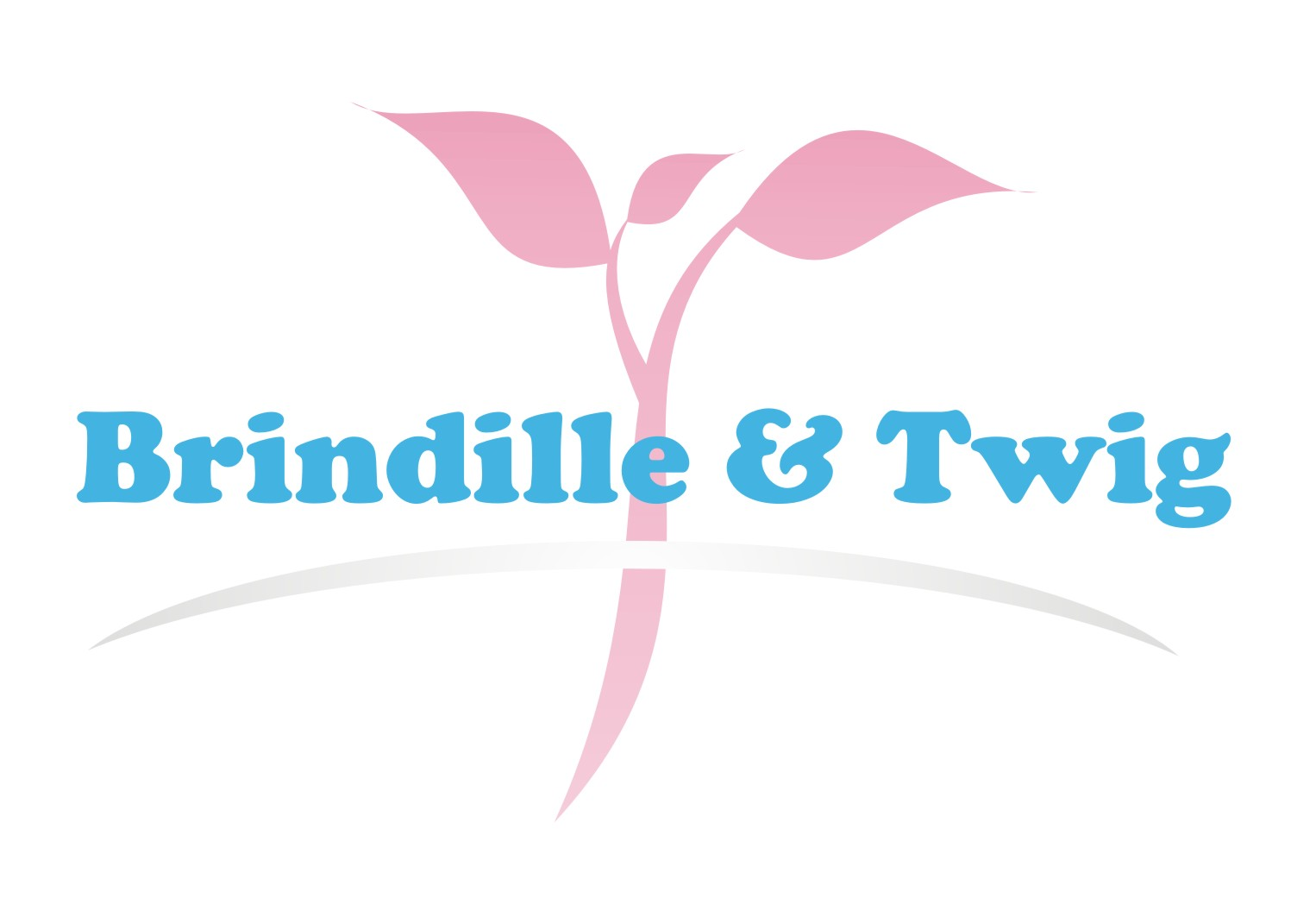 Logo Design by Gaber Barabaraberebere - Entry No. 9 in the Logo Design Contest Logo Design for Brindille & Twig.