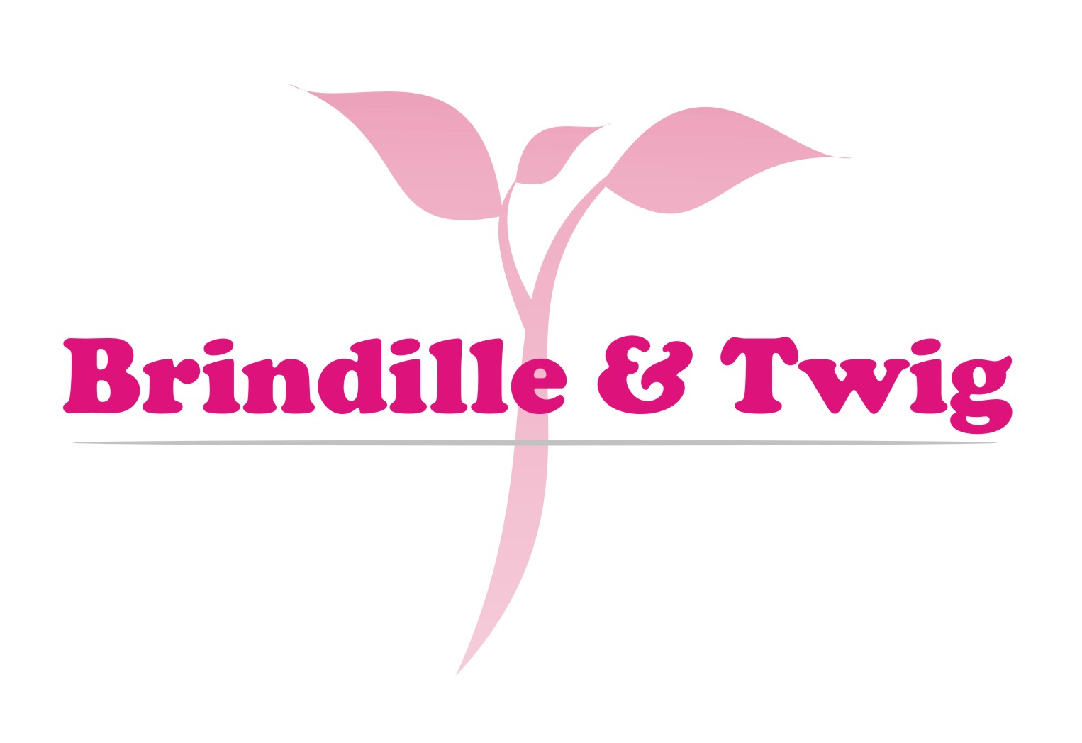 Logo Design by Gaber Barabaraberebere - Entry No. 10 in the Logo Design Contest Logo Design for Brindille & Twig.