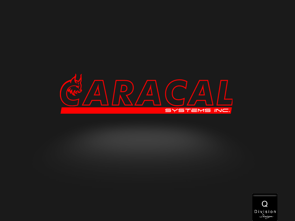 Logo Design by Q_Division_Designs - Entry No. 44 in the Logo Design Contest Inspiring Logo Design for Caracal Systems Inc..