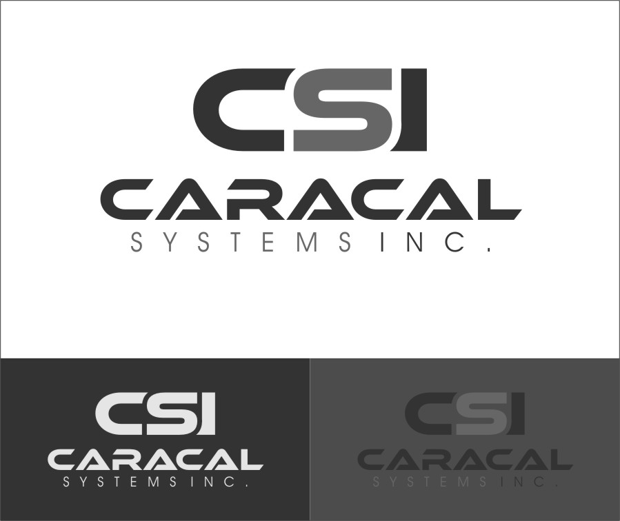 Logo Design by RoSyid Rono-Rene On Java - Entry No. 47 in the Logo Design Contest Inspiring Logo Design for Caracal Systems Inc..