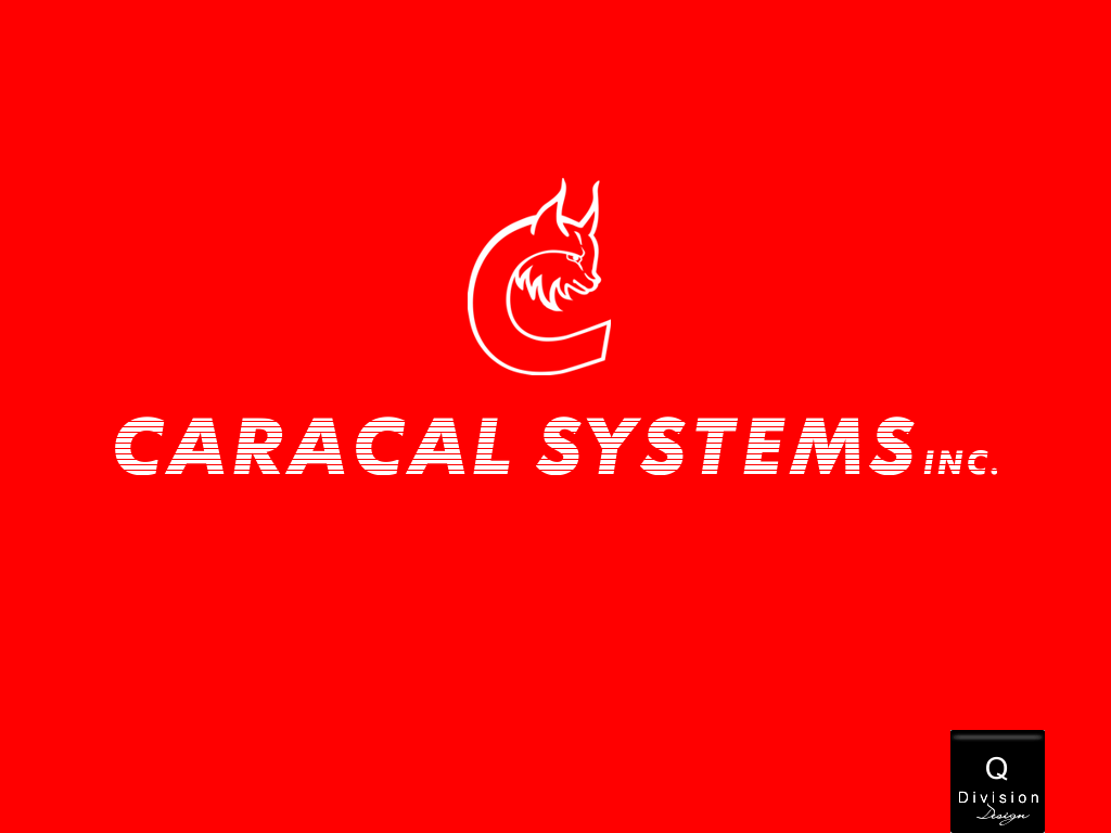 Logo Design by Q_Division_Designs - Entry No. 56 in the Logo Design Contest Inspiring Logo Design for Caracal Systems Inc..
