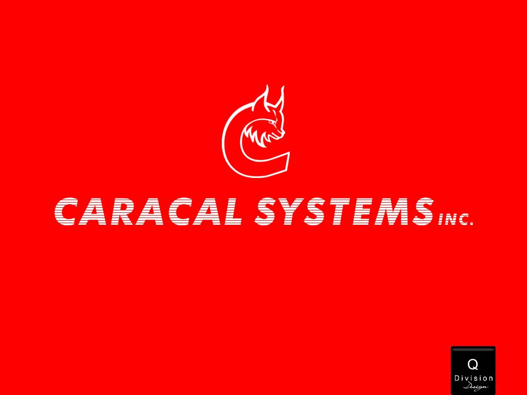 Logo Design by Q_Division_Designs - Entry No. 56 in the Logo Design Contest Inspiring Logo Design for Caracal Systems Inc..