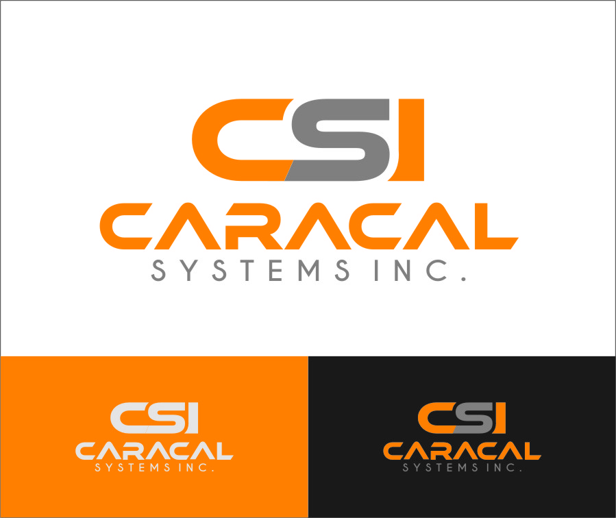 Logo Design by Ngepet_art - Entry No. 58 in the Logo Design Contest Inspiring Logo Design for Caracal Systems Inc..