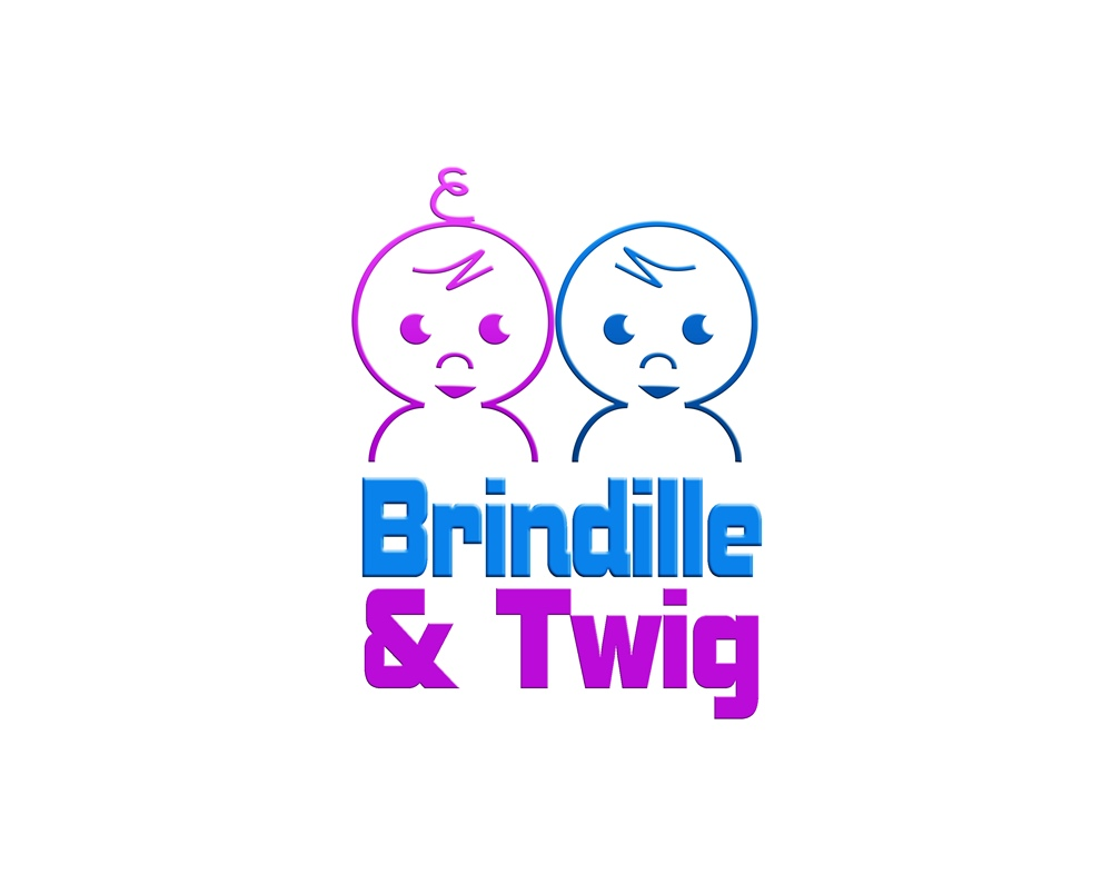 Logo Design by Respati Himawan - Entry No. 12 in the Logo Design Contest Logo Design for Brindille & Twig.