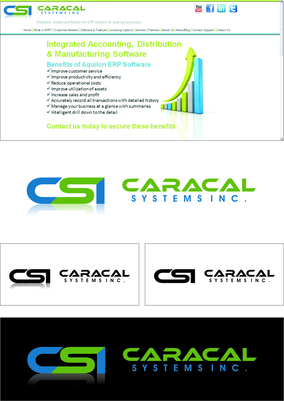 Logo Design by Ngepet_art - Entry No. 62 in the Logo Design Contest Inspiring Logo Design for Caracal Systems Inc..