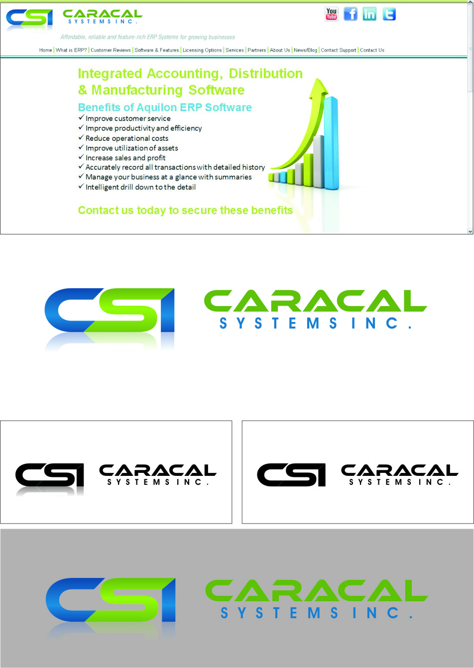 Logo Design by RasYa Muhammad Athaya - Entry No. 63 in the Logo Design Contest Inspiring Logo Design for Caracal Systems Inc..