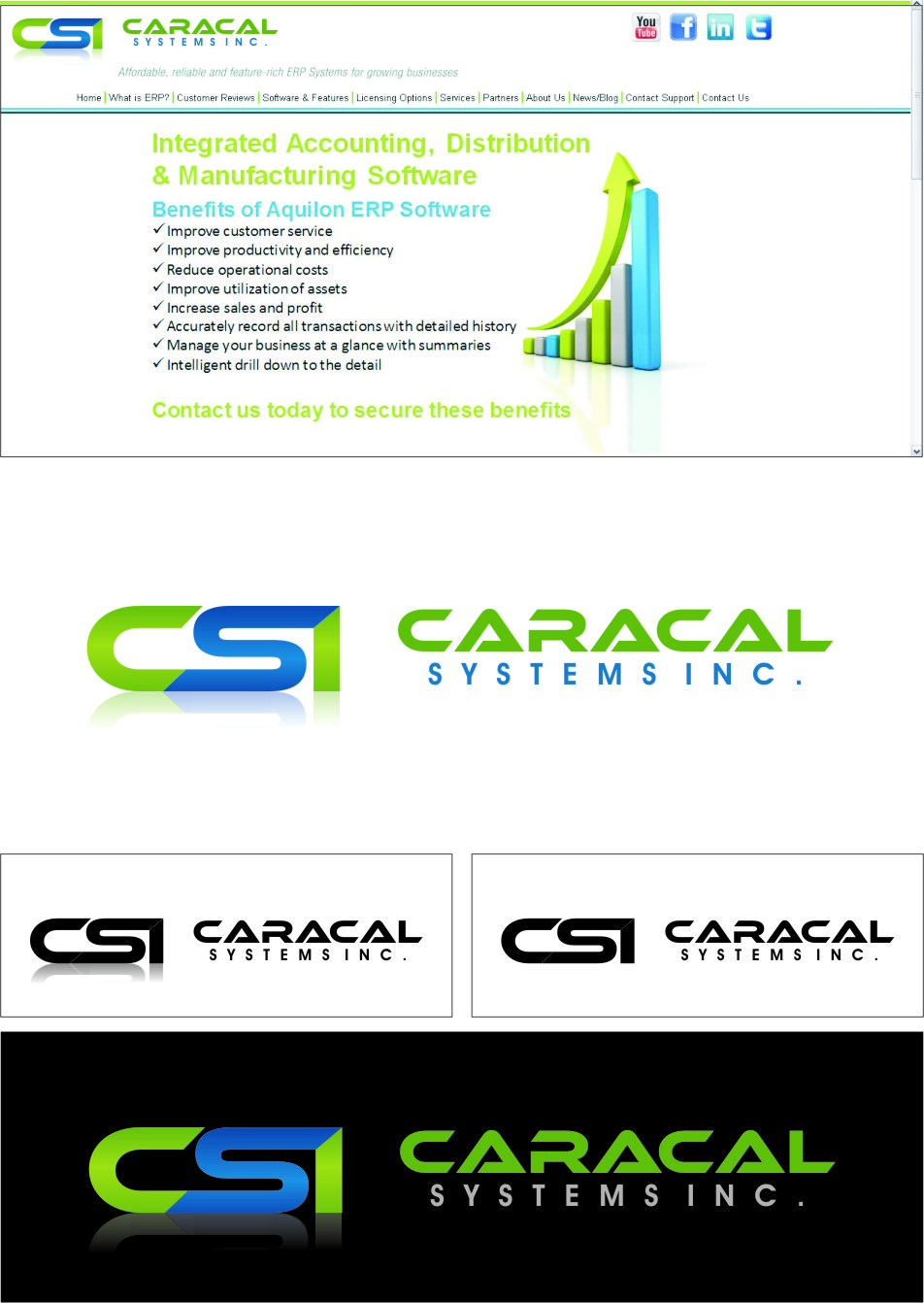 Logo Design by RoSyid Rono-Rene On Java - Entry No. 64 in the Logo Design Contest Inspiring Logo Design for Caracal Systems Inc..