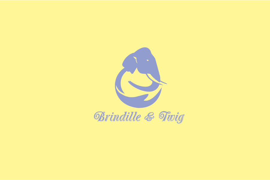 Logo Design by Digital Designs - Entry No. 37 in the Logo Design Contest Logo Design for Brindille & Twig.