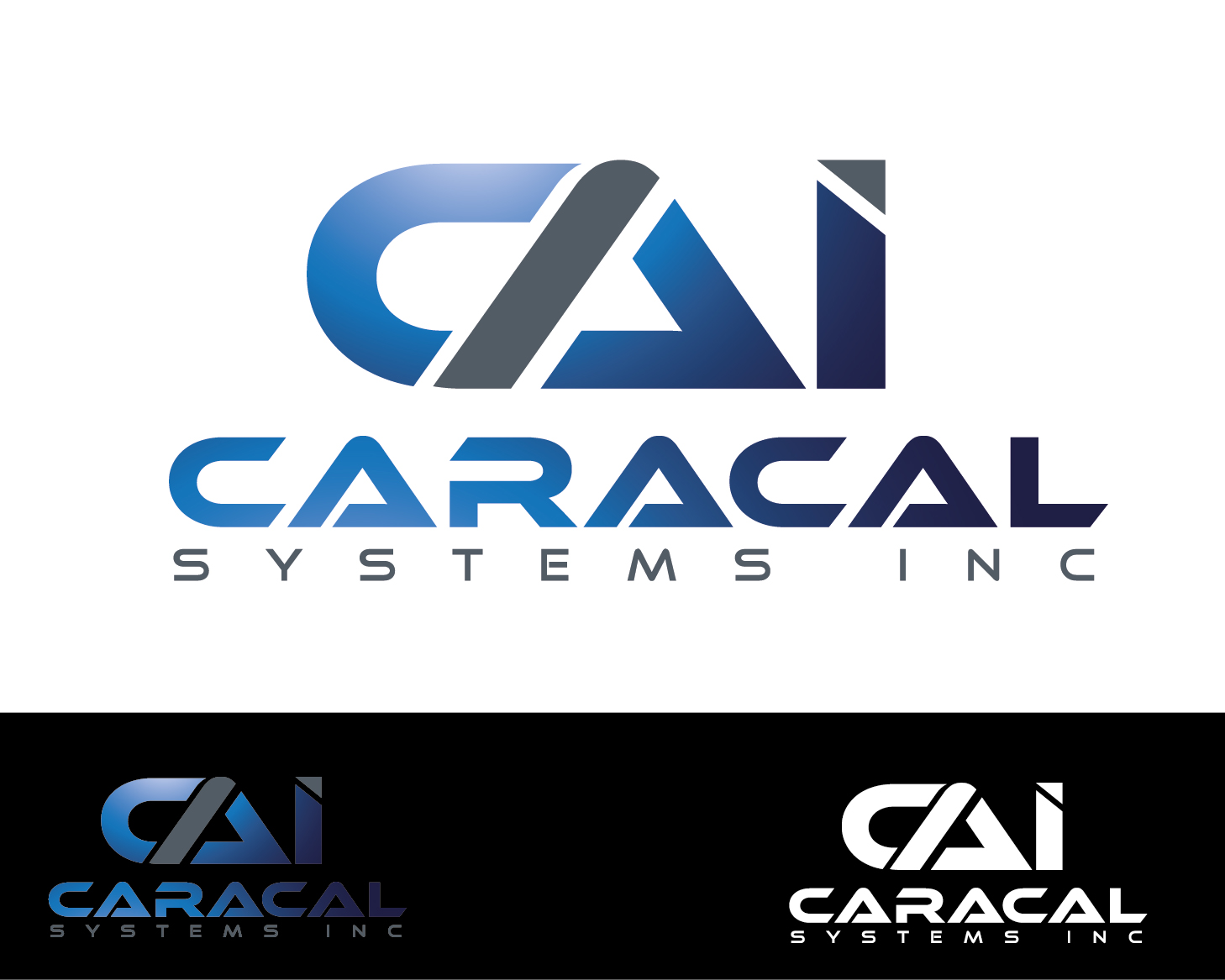 Logo Design by VENTSISLAV KOVACHEV - Entry No. 75 in the Logo Design Contest Inspiring Logo Design for Caracal Systems Inc..