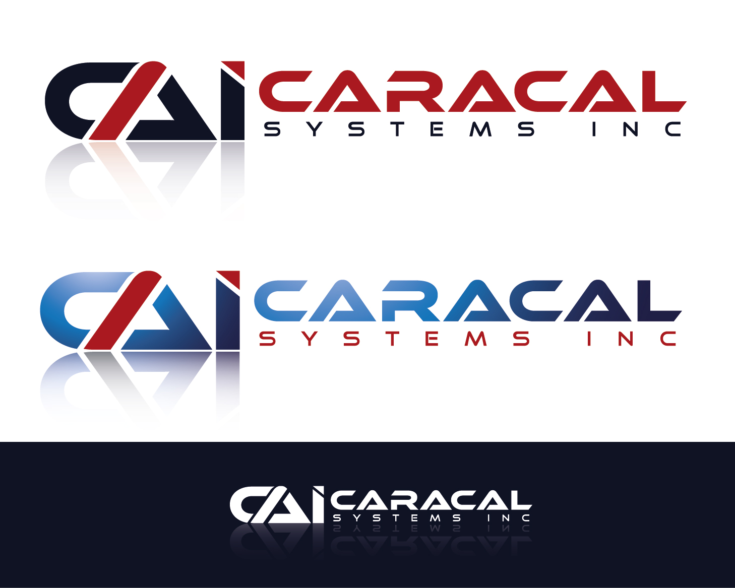 Logo Design by VENTSISLAV KOVACHEV - Entry No. 78 in the Logo Design Contest Inspiring Logo Design for Caracal Systems Inc..