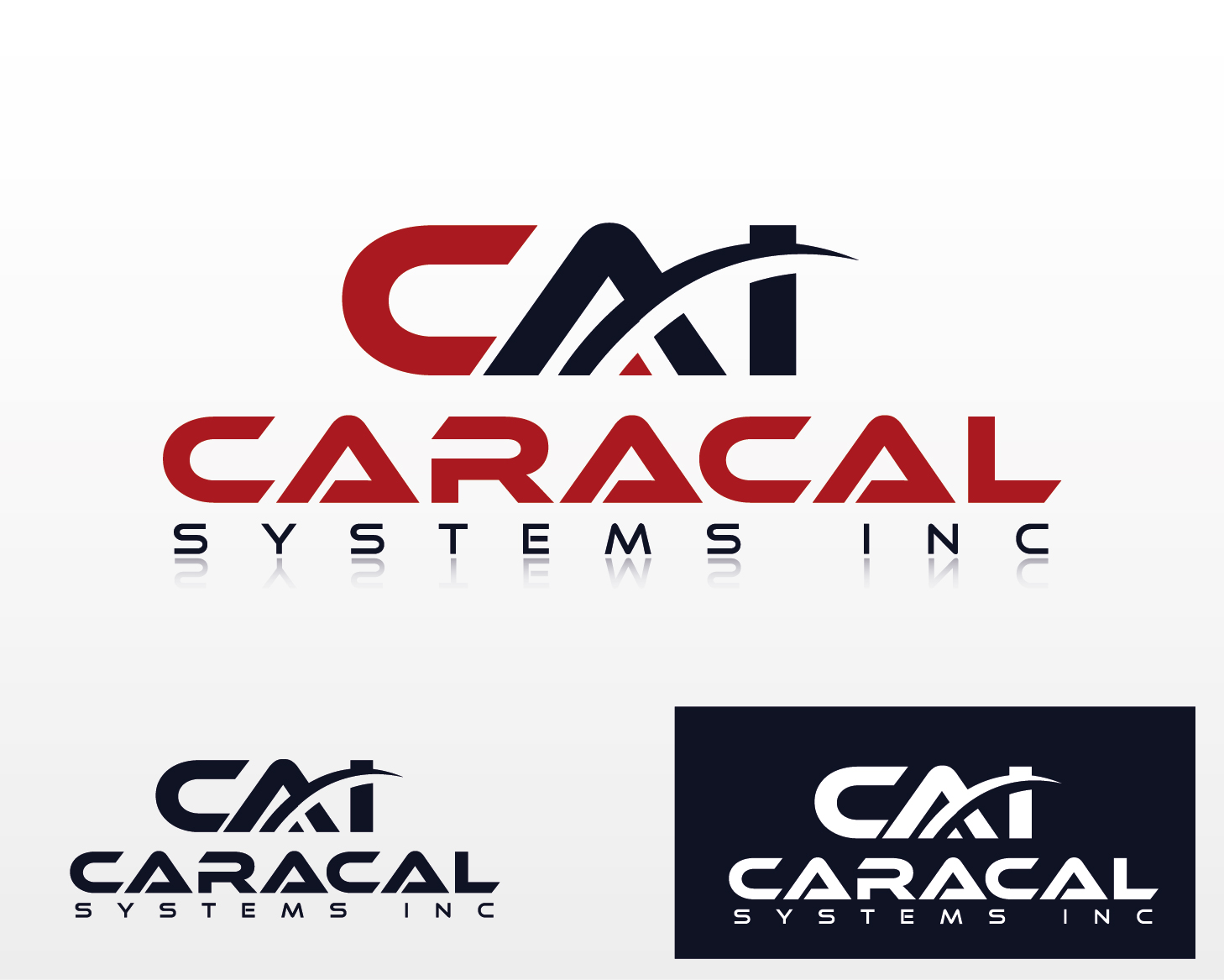 Logo Design by VENTSISLAV KOVACHEV - Entry No. 79 in the Logo Design Contest Inspiring Logo Design for Caracal Systems Inc..