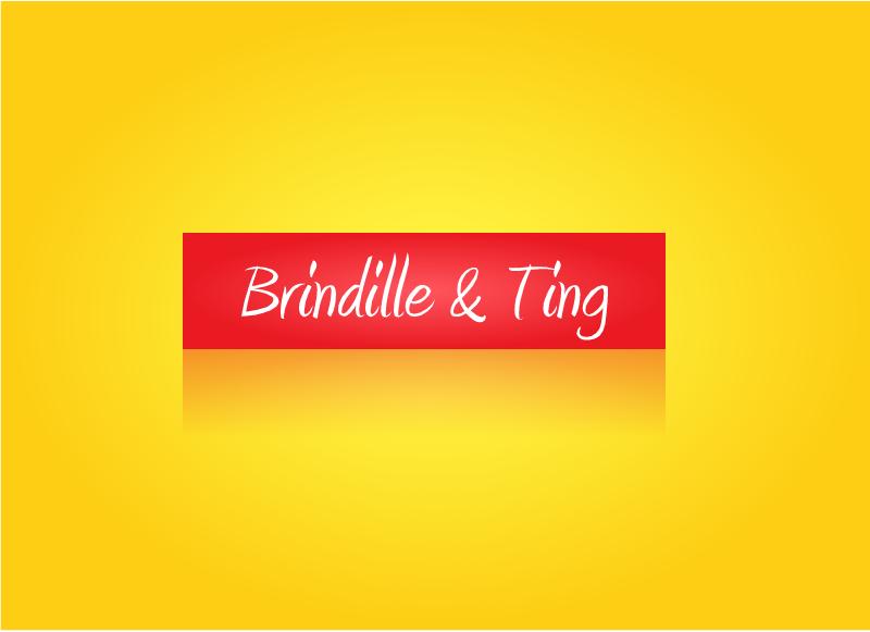 Logo Design by Tathastu Sharma - Entry No. 65 in the Logo Design Contest Logo Design for Brindille & Twig.