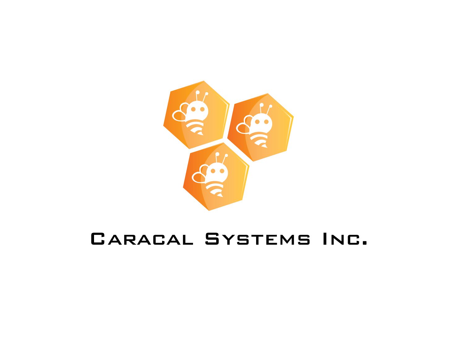 Logo Design by rA - Entry No. 96 in the Logo Design Contest Inspiring Logo Design for Caracal Systems Inc..