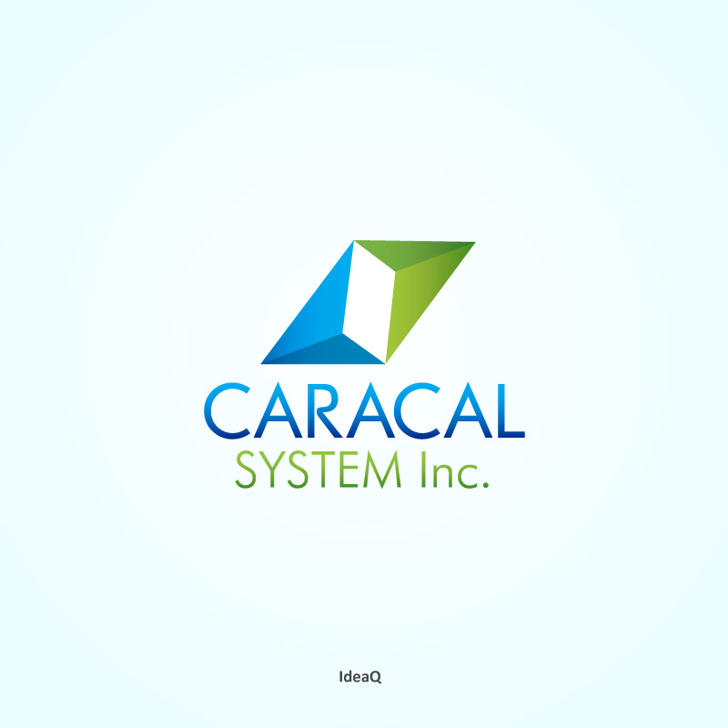 Logo Design by Private User - Entry No. 102 in the Logo Design Contest Inspiring Logo Design for Caracal Systems Inc..