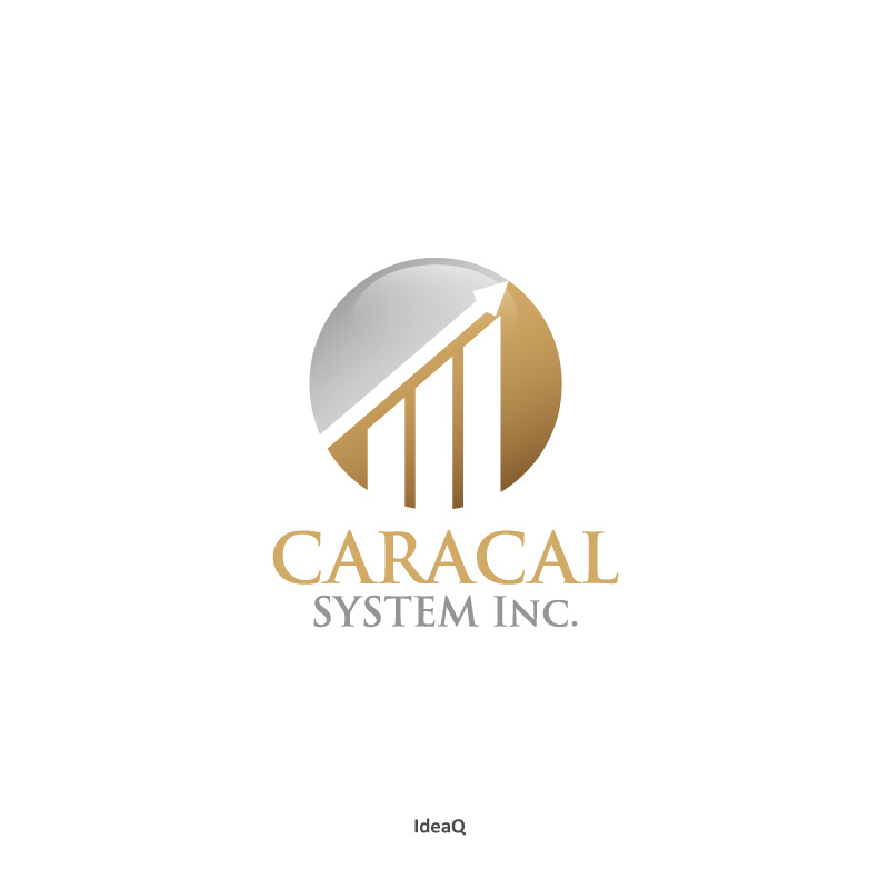 Logo Design by Private User - Entry No. 104 in the Logo Design Contest Inspiring Logo Design for Caracal Systems Inc..