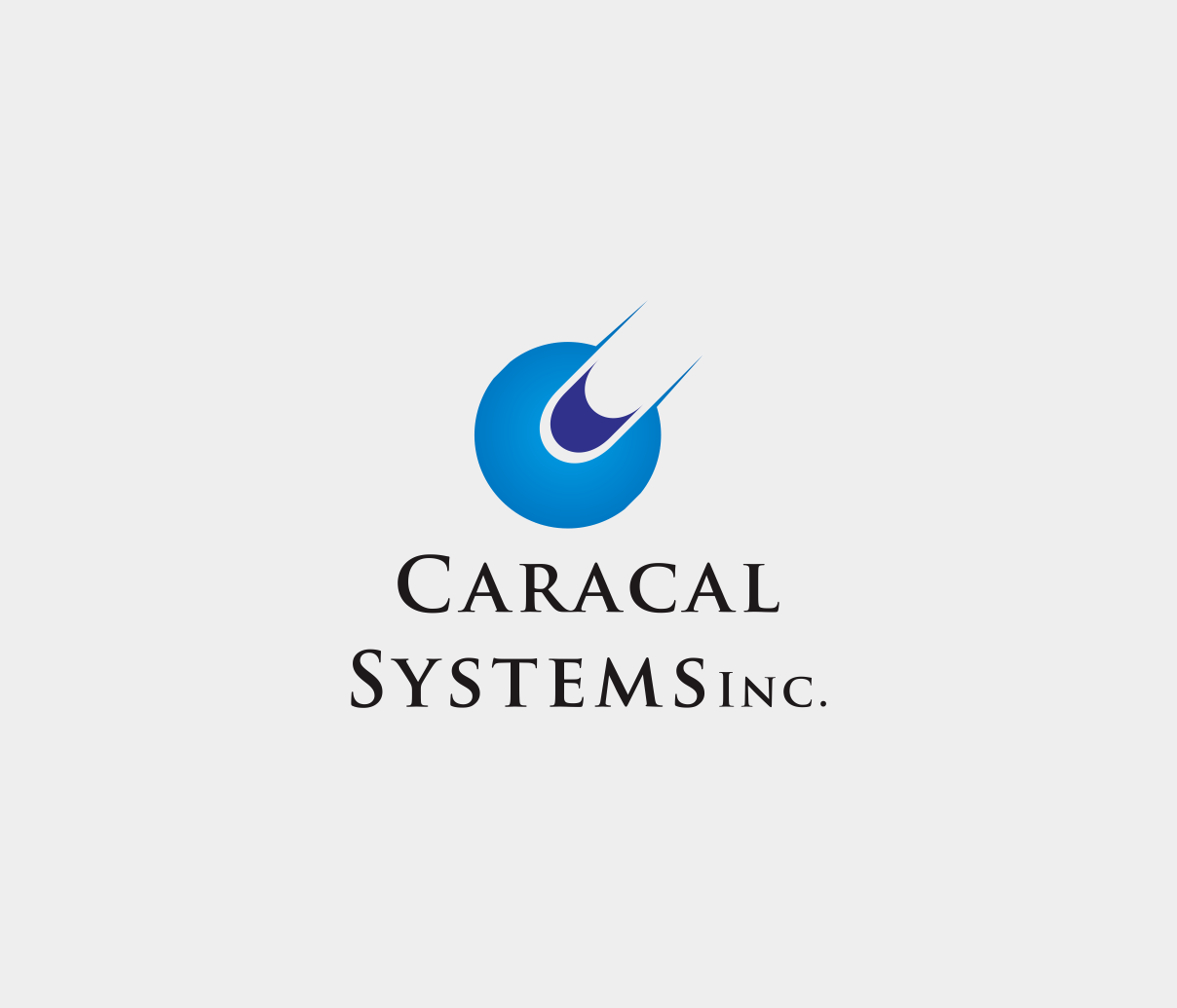 Logo Design by Armada Jamaluddin - Entry No. 127 in the Logo Design Contest Inspiring Logo Design for Caracal Systems Inc..