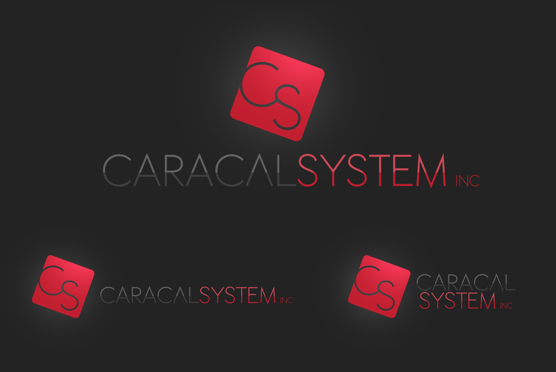 Logo Design by Jan Chua - Entry No. 128 in the Logo Design Contest Inspiring Logo Design for Caracal Systems Inc..