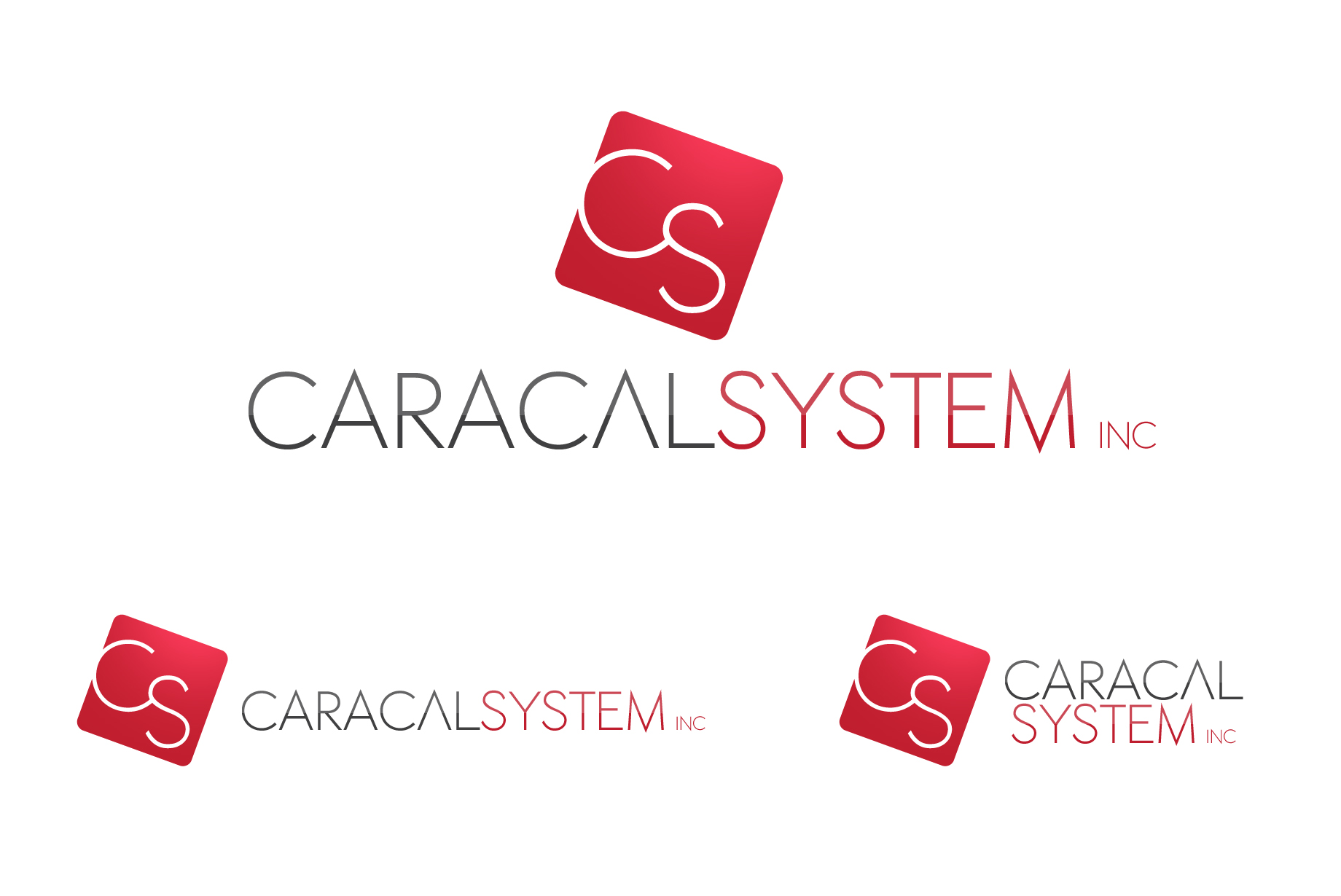 Logo Design by Jan Chua - Entry No. 129 in the Logo Design Contest Inspiring Logo Design for Caracal Systems Inc..