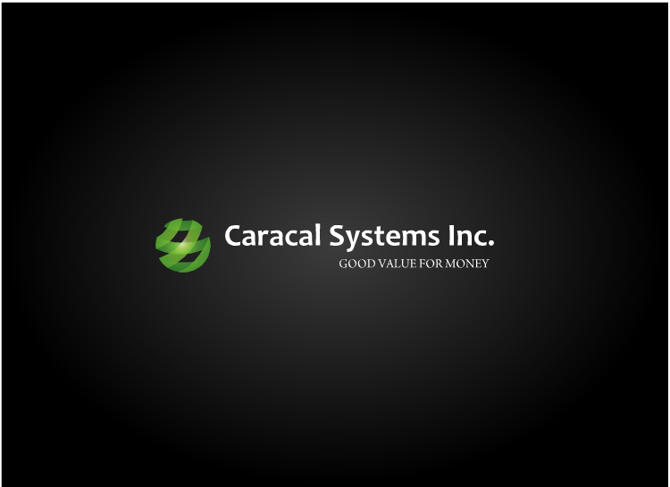 Logo Design by Tathastu Sharma - Entry No. 133 in the Logo Design Contest Inspiring Logo Design for Caracal Systems Inc..