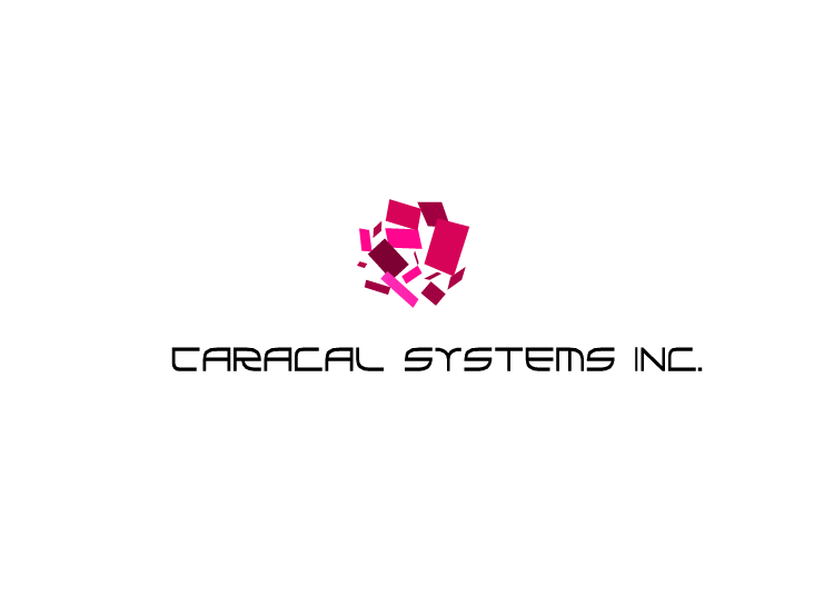 Logo Design by Tathastu Sharma - Entry No. 134 in the Logo Design Contest Inspiring Logo Design for Caracal Systems Inc..