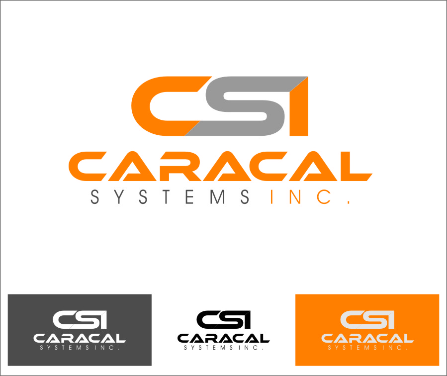 Logo Design by RoSyid Rono-Rene On Java - Entry No. 152 in the Logo Design Contest Inspiring Logo Design for Caracal Systems Inc..