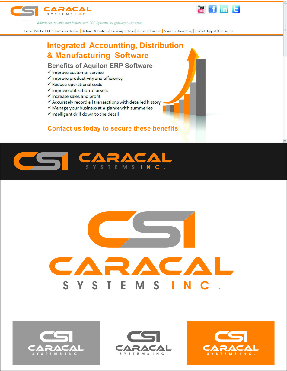 Logo Design by Ngepet_art - Entry No. 155 in the Logo Design Contest Inspiring Logo Design for Caracal Systems Inc..