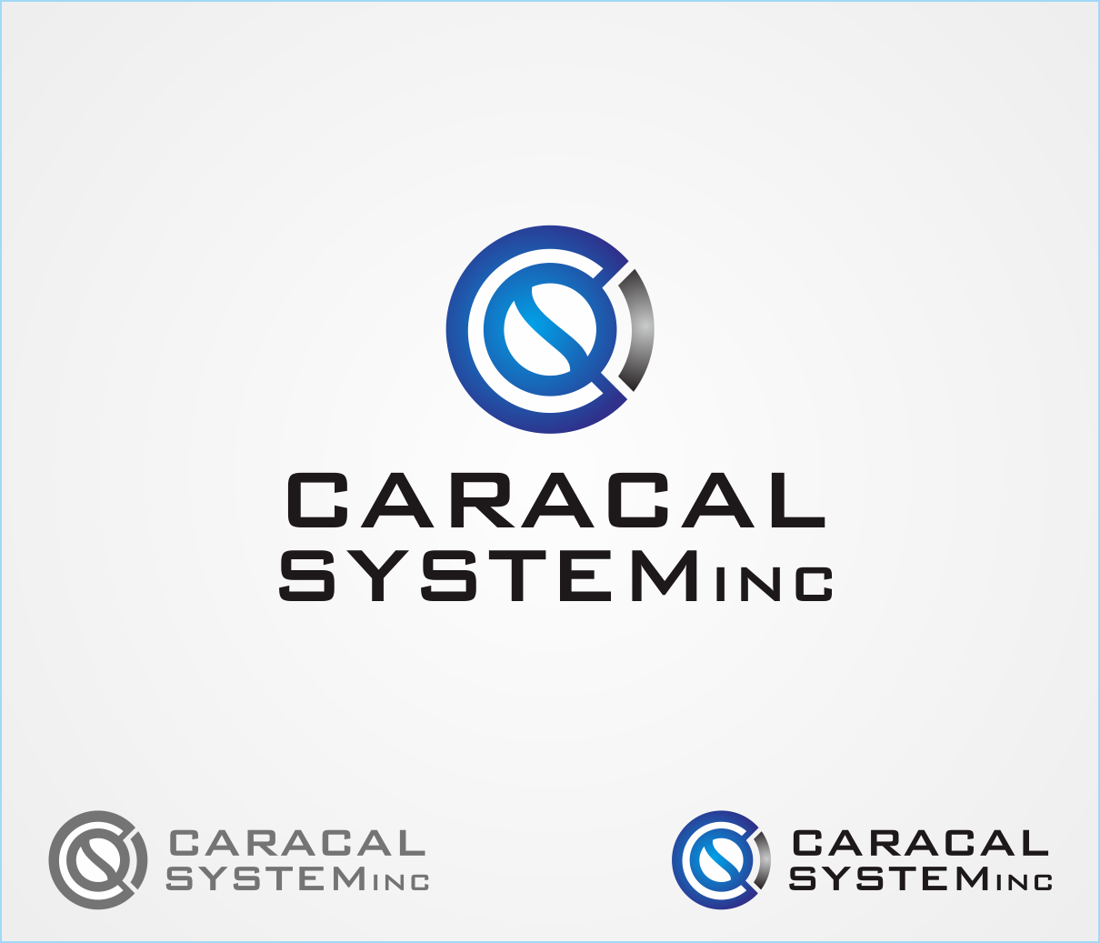 Logo Design by Armada Jamaluddin - Entry No. 168 in the Logo Design Contest Inspiring Logo Design for Caracal Systems Inc..