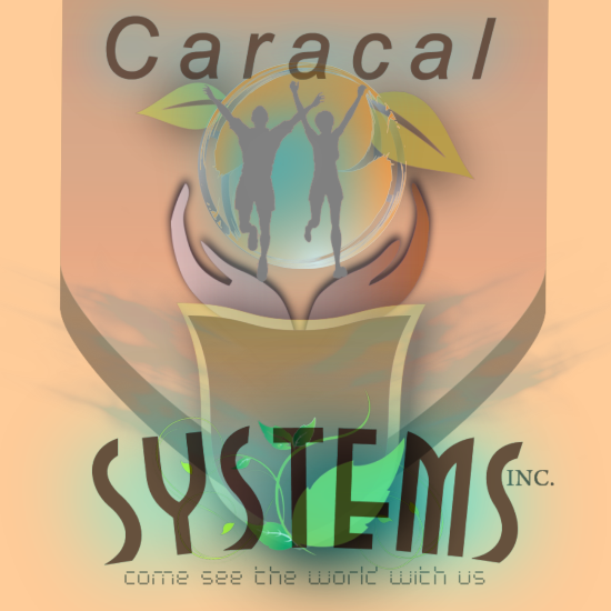 Logo Design by Ron Grubbs - Entry No. 172 in the Logo Design Contest Inspiring Logo Design for Caracal Systems Inc..
