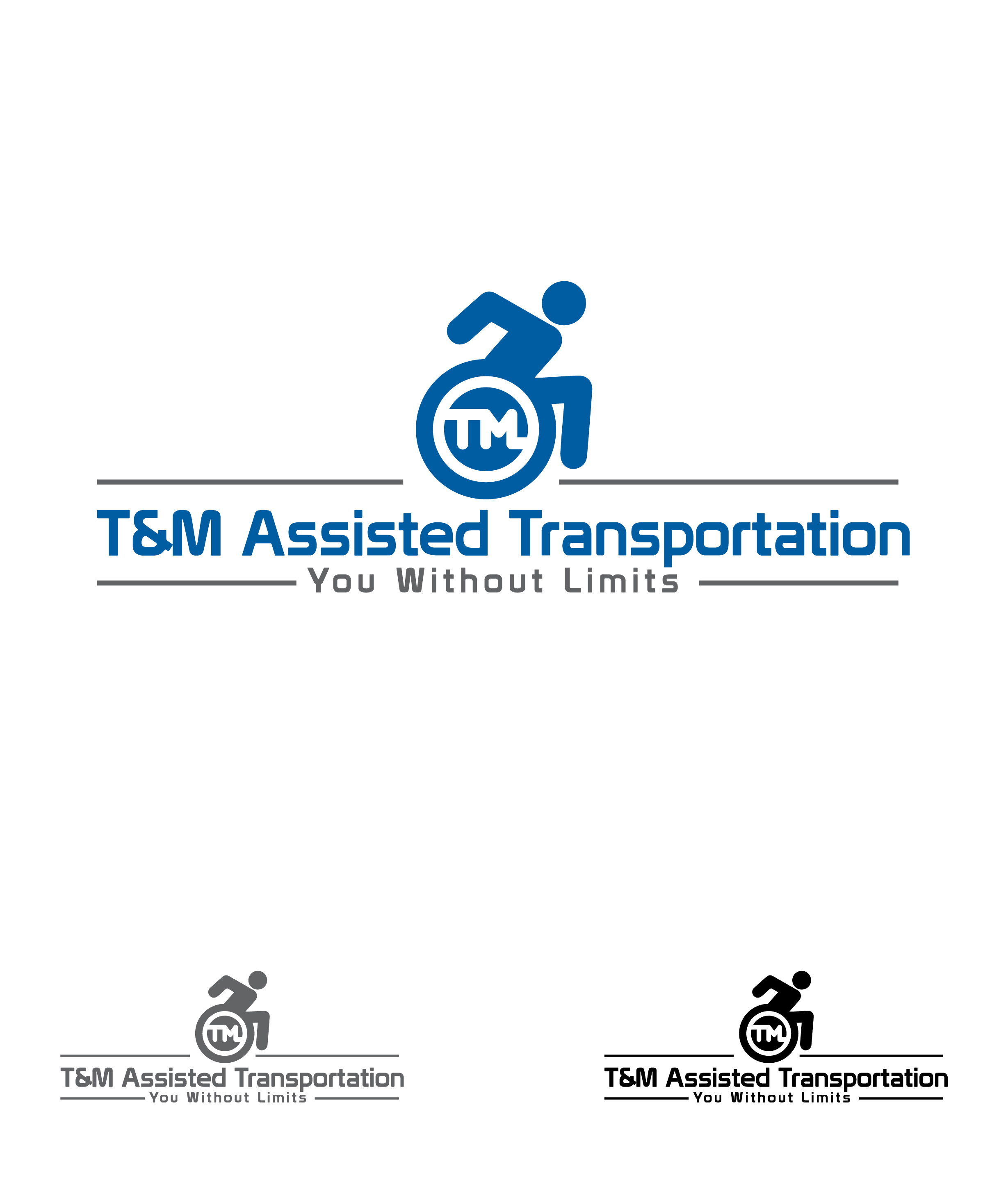 Logo Design by lagalag - Entry No. 40 in the Logo Design Contest Artistic Logo Design for T & M.