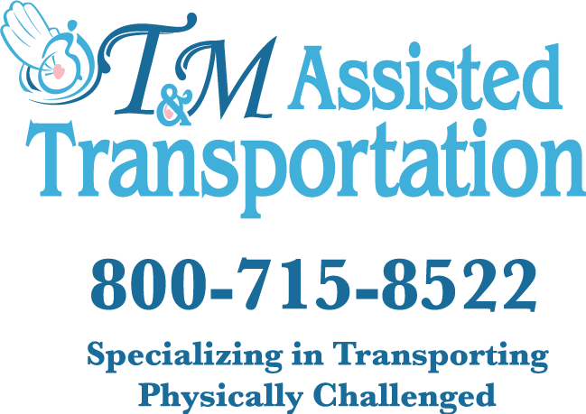Logo Design by Beth Temple - Entry No. 65 in the Logo Design Contest Artistic Logo Design for T & M.