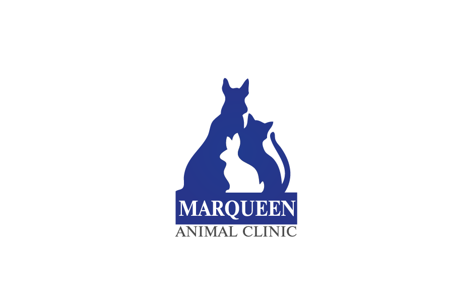 Logo Design by Private User - Entry No. 2 in the Logo Design Contest Fun Logo Design for MarQueen Animal Clinic.