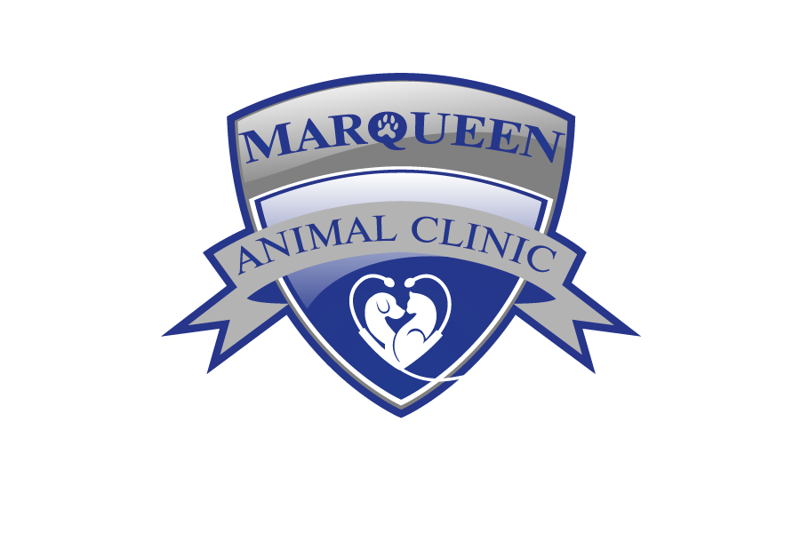Logo Design by Private User - Entry No. 3 in the Logo Design Contest Fun Logo Design for MarQueen Animal Clinic.