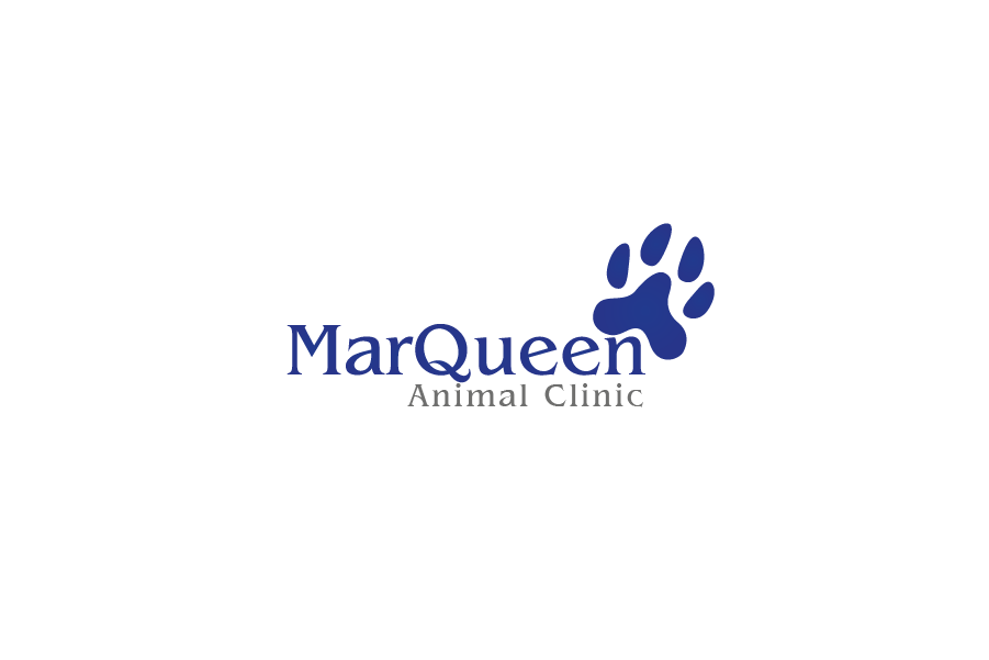 Logo Design by Private User - Entry No. 4 in the Logo Design Contest Fun Logo Design for MarQueen Animal Clinic.