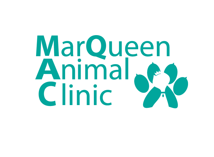 Logo Design by Jan Chua - Entry No. 22 in the Logo Design Contest Fun Logo Design for MarQueen Animal Clinic.