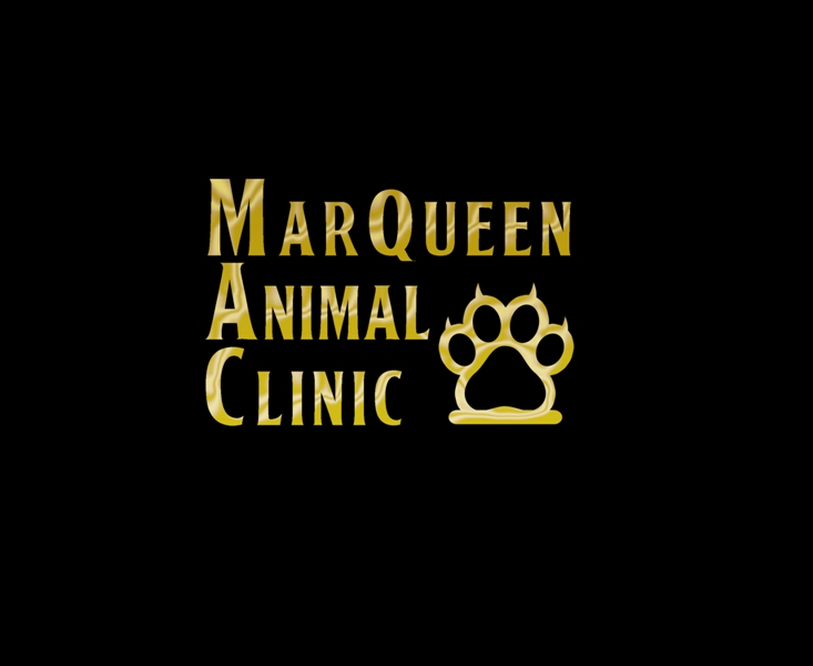 Logo Design by Juan_Kata - Entry No. 51 in the Logo Design Contest Fun Logo Design for MarQueen Animal Clinic.