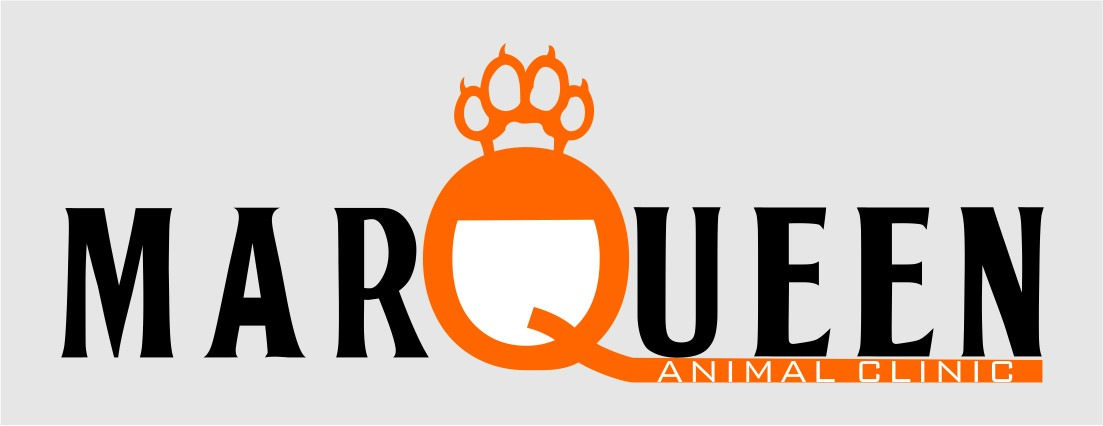 Logo Design by Crispin Jr Vasquez - Entry No. 73 in the Logo Design Contest Fun Logo Design for MarQueen Animal Clinic.