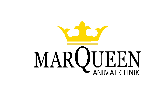 Logo Design by Nirmali Kaushalya - Entry No. 85 in the Logo Design Contest Fun Logo Design for MarQueen Animal Clinic.