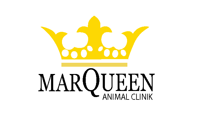 Logo Design by Nirmali Kaushalya - Entry No. 86 in the Logo Design Contest Fun Logo Design for MarQueen Animal Clinic.