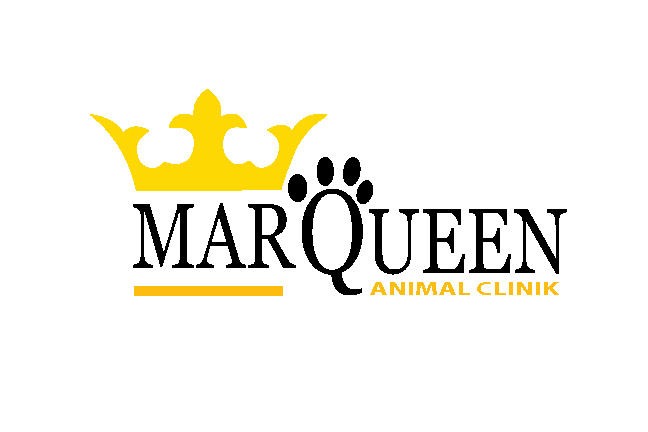 Logo Design by Nirmali Kaushalya - Entry No. 87 in the Logo Design Contest Fun Logo Design for MarQueen Animal Clinic.