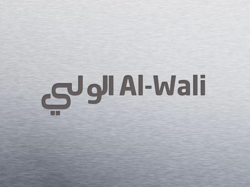Logo Design by Mohamed Abdulrub - Entry No. 20 in the Logo Design Contest Inspiring Logo Design for Al Wali Metals.