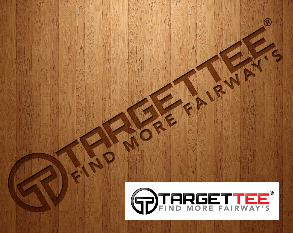 Logo Design by lagalag - Entry No. 58 in the Logo Design Contest Imaginative Logo Design for TARGET-TEE.