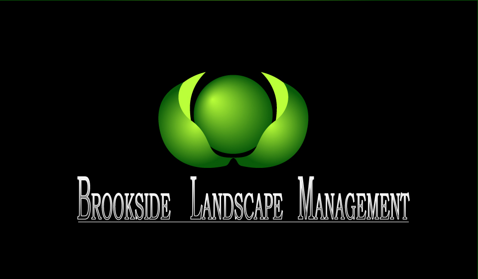 Logo Design by Ioana Marina Oaie - Entry No. 56 in the Logo Design Contest New Logo Design for Brookside Landscape Management.