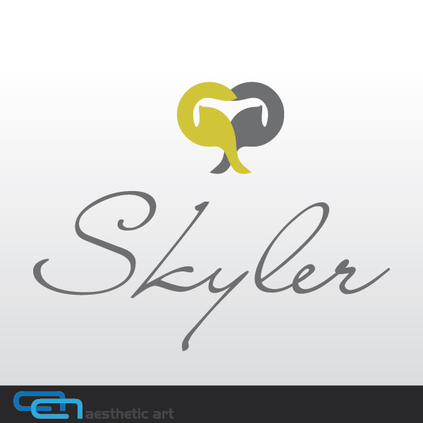 Logo Design by aesthetic-art - Entry No. 53 in the Logo Design Contest Skyler Clothing Logo.