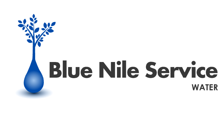 Logo Design by Ismail Adhi Wibowo - Entry No. 4 in the Logo Design Contest Imaginative Logo Design for Blue Nile Service Ltd.