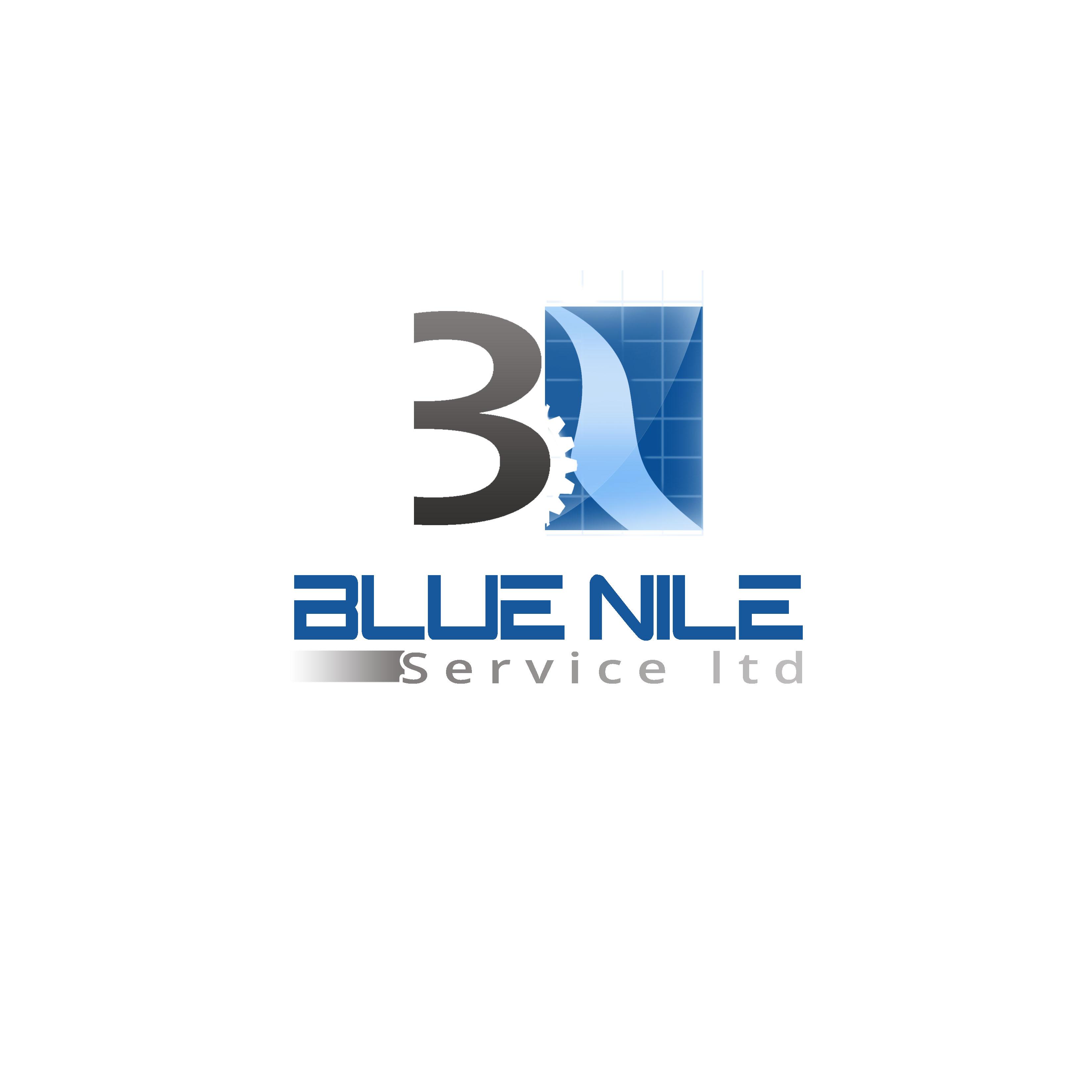 Logo Design by Allan Esclamado - Entry No. 8 in the Logo Design Contest Imaginative Logo Design for Blue Nile Service Ltd.
