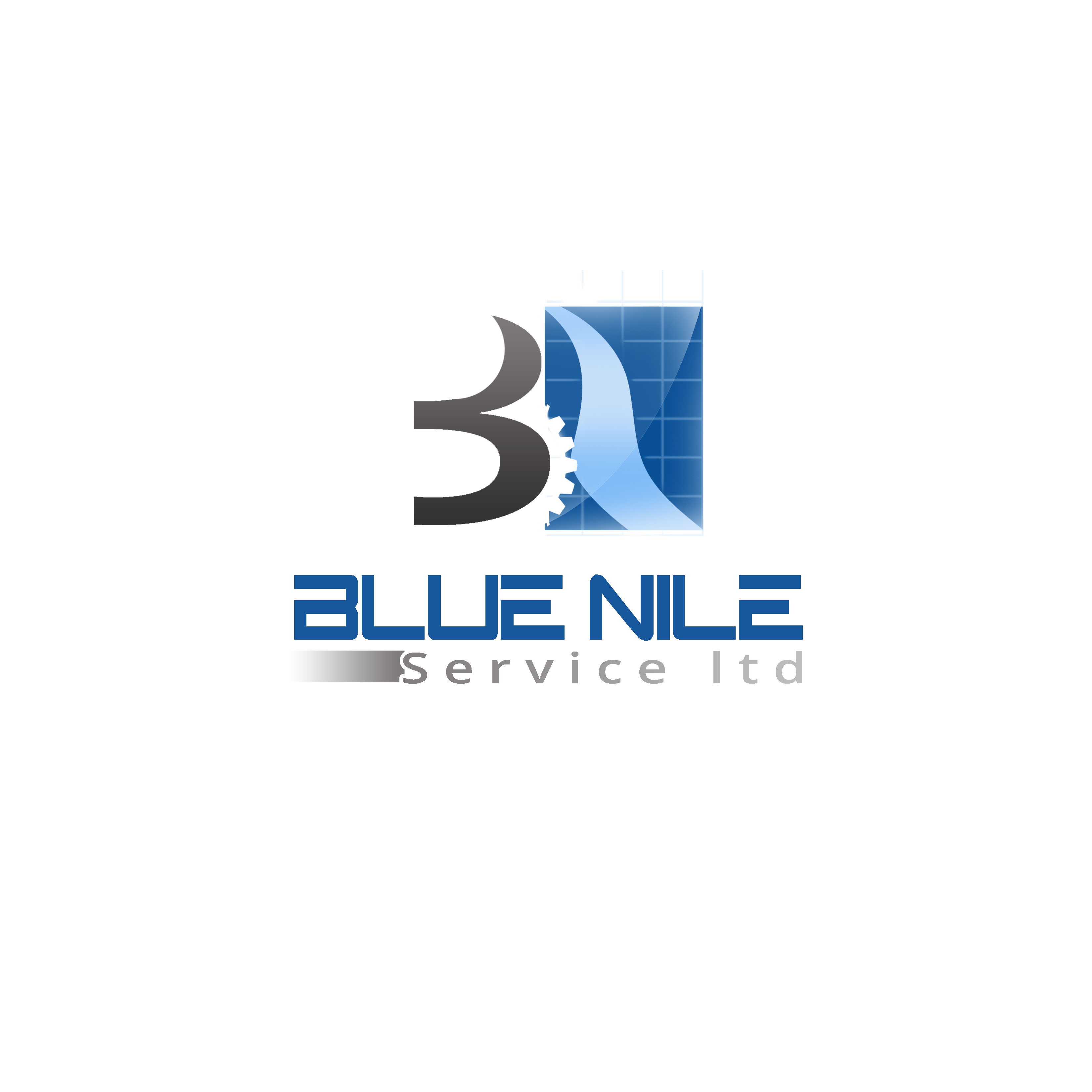 Logo Design by Allan Esclamado - Entry No. 9 in the Logo Design Contest Imaginative Logo Design for Blue Nile Service Ltd.