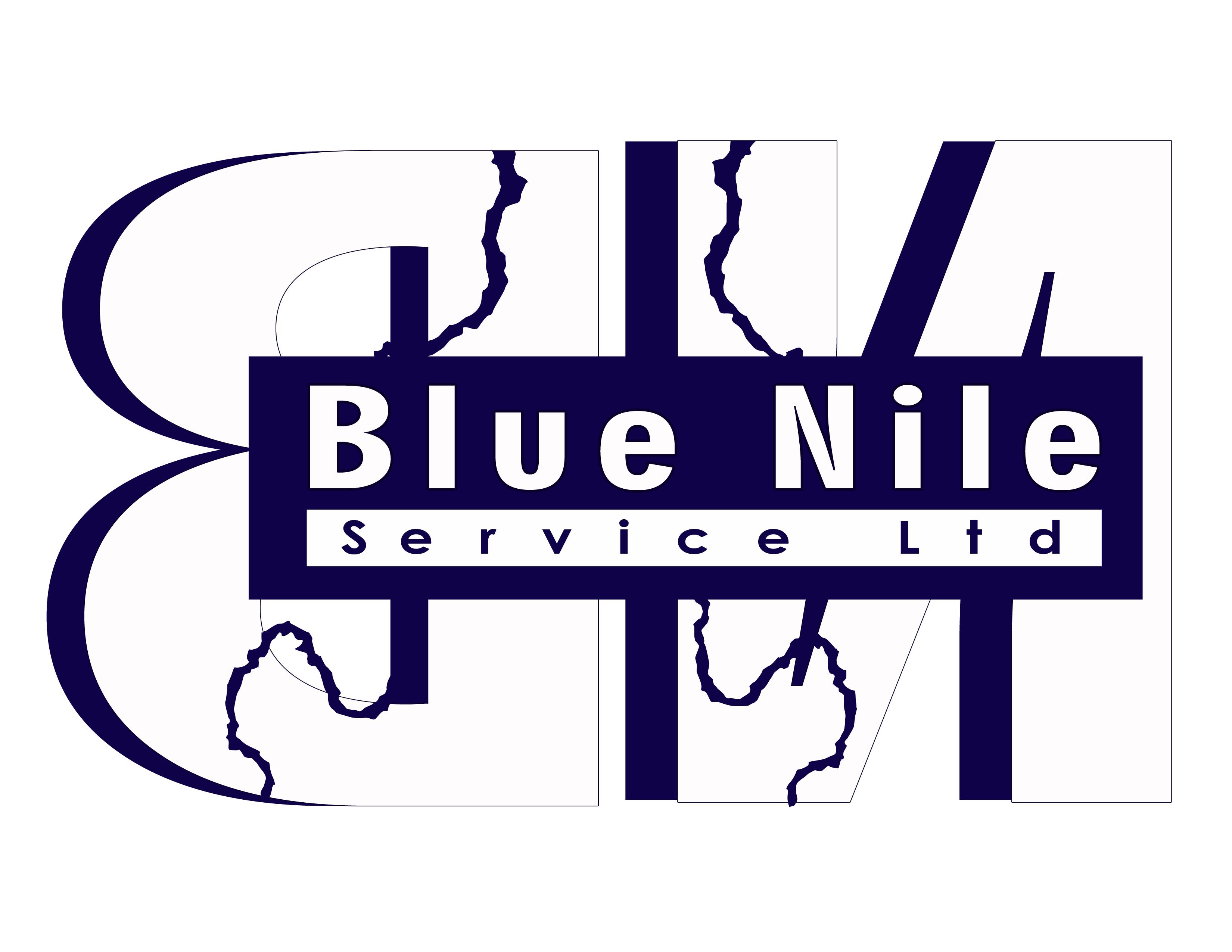 Logo Design by Cresencio Jao III - Entry No. 20 in the Logo Design Contest Imaginative Logo Design for Blue Nile Service Ltd.