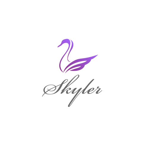 Logo Design by SilverEagle - Entry No. 98 in the Logo Design Contest Skyler Clothing Logo.