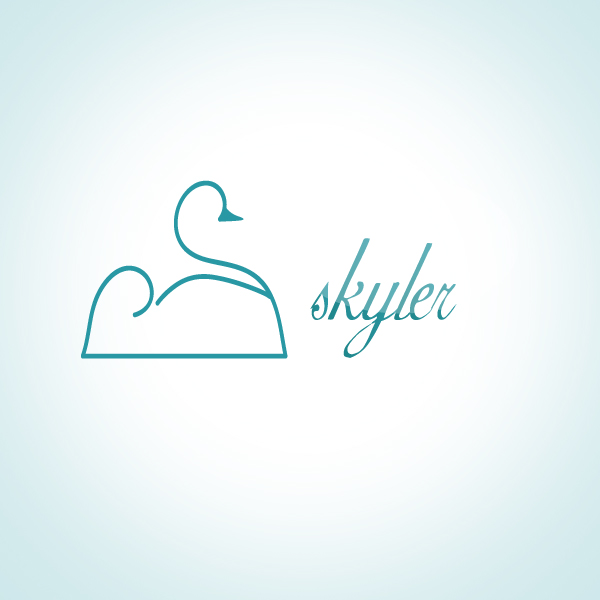 Logo Design by Darrenmaher - Entry No. 106 in the Logo Design Contest Skyler Clothing Logo.