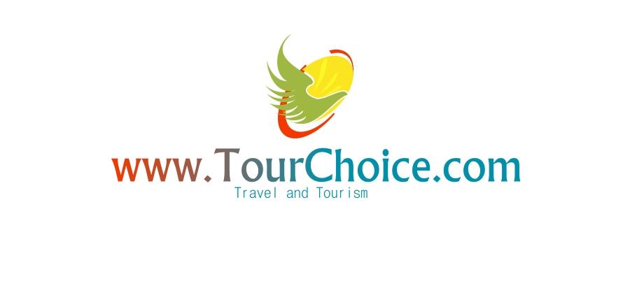 Logo Design by Private User - Entry No. 10 in the Logo Design Contest www.TourChoice.com Logo Design.